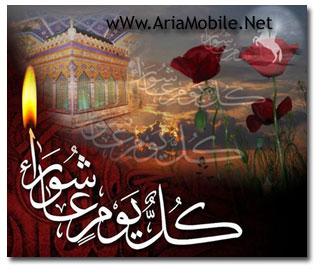 زیارت عاشورا ویژه ماه محرم با صدای زیبای استاد فرهمند (ziyarat Ashoora)